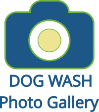 Auto spa london dog wash auto spa london find our self serve dog washes at 2 auto spa locations in london adelaide at central baseline at mcgregor solutioingenieria Gallery
